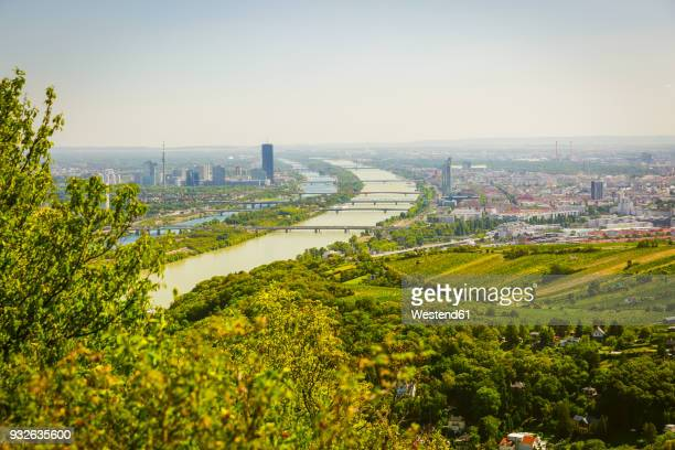 austria, vienna with danube river, view from leopoldsberg - danube river stock pictures, royalty-free photos & images