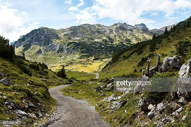 austria, vorarlberg, lechtal alps, trail - vorarlberg stock-fotos und bilder