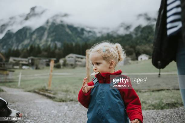 austria, vorarlberg, mellau, toddler eating a cake during a trip in the mountains - dog eats out girl stock pictures, royalty-free photos & images