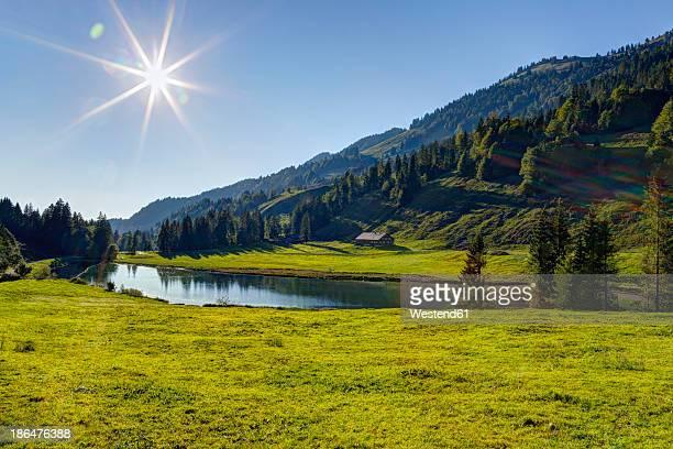 austria, vorarlberg, view of lecknersee lake in lecknertal valley - vorarlberg stock-fotos und bilder