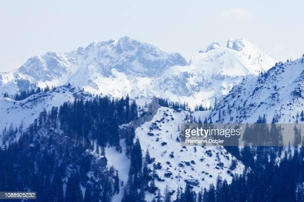 Austrian and Bavarian Schinder in winter, Mangfall mountains, Bavaria, Tyrol, Germany, Austria