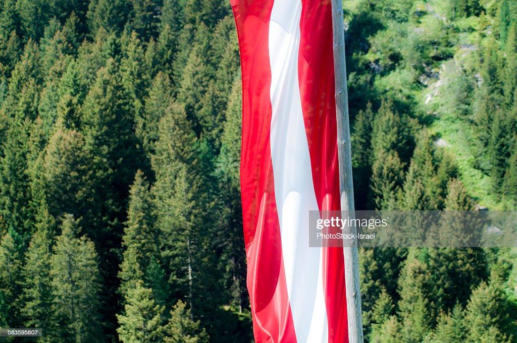 Austrian flag in the Alps : Stock Photo