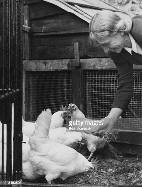 Austrian-Czechoslovak artist Mary Duras feeding chickens at her residence, Buckinghamshire, UK, 1942.