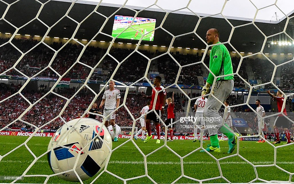 Austria's goalkeeper Robert Almer reacts after Hungary's forward Adam Szalai scored during the Euro 2016 group F football match between Hungary and Austria at the Matmut Atlantique stadium in Bordeaux on June 14, 2016. / AFP / TOBIAS