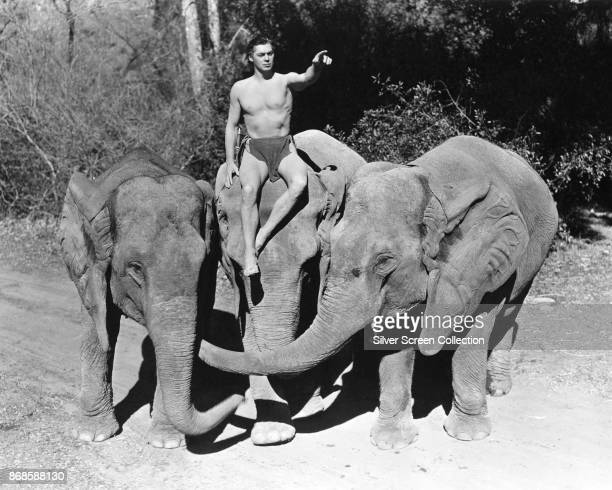 AustroHungarianborn American actor and Olympic swimming medalist Johnny Weissmuller points as he sits atop an elephant in a scene from 'Tarzan Finds...