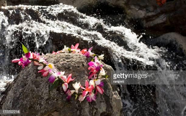 伝統的なハワイのレイの滝