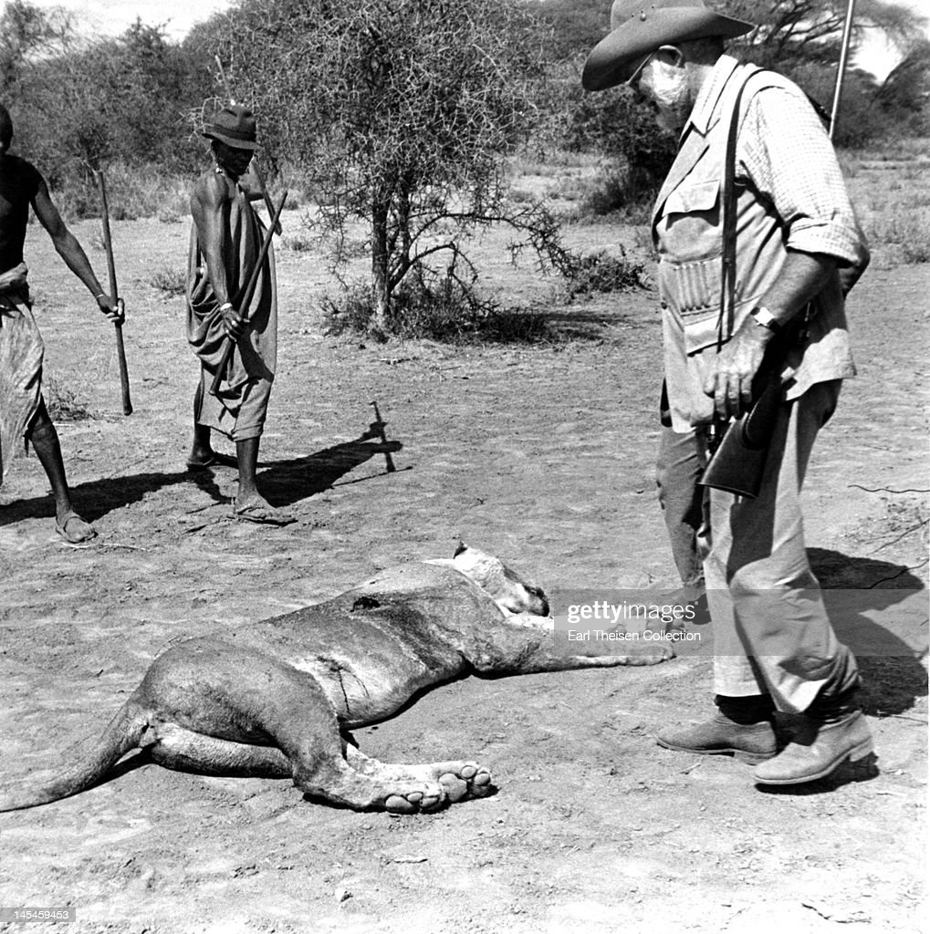 Author Ernest Hemingway inspects a lioness he has just killed while on a big game hunt in September 1952 in Kenya.