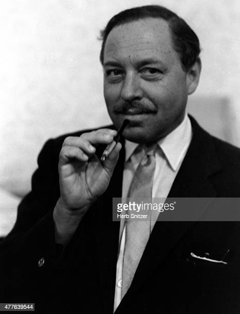Author Tennessee Williams poses for a portrait in 1961 in New York City, New York.