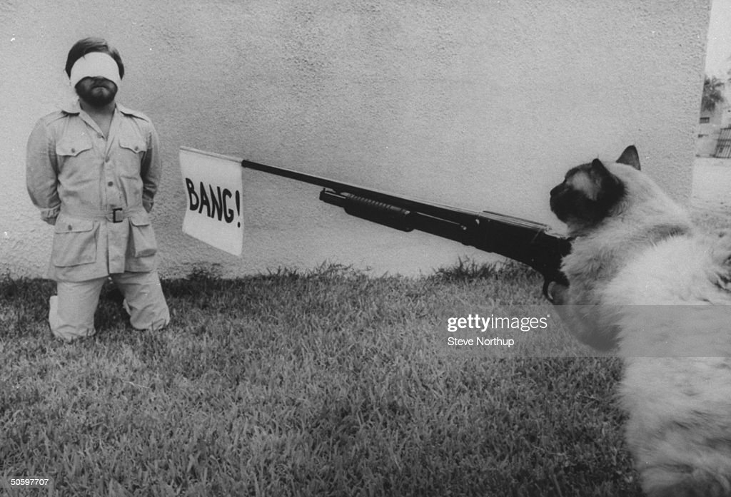 Author/cartoonist Steve Bond kneeling blindfolded in front of wall as Himalayan cat takes aim at him w. shotgun sporting a BANG! flag in its barrel while spoofing what his cat-loving critics want done to him after reading his book 101 USES