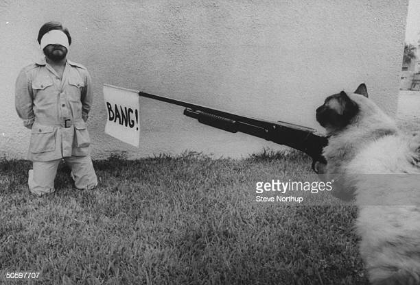 Author/cartoonist Steve Bond kneeling blindfolded in front of wall as Himalayan cat takes aim at him w shotgun sporting a BANG flag in its barrel...
