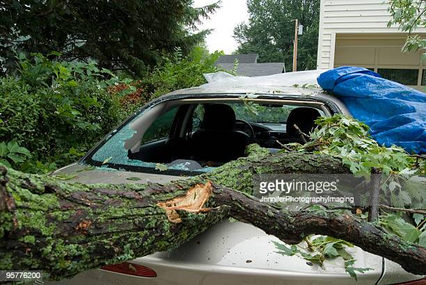 auto damage - hail stock pictures, royalty-free photos & images