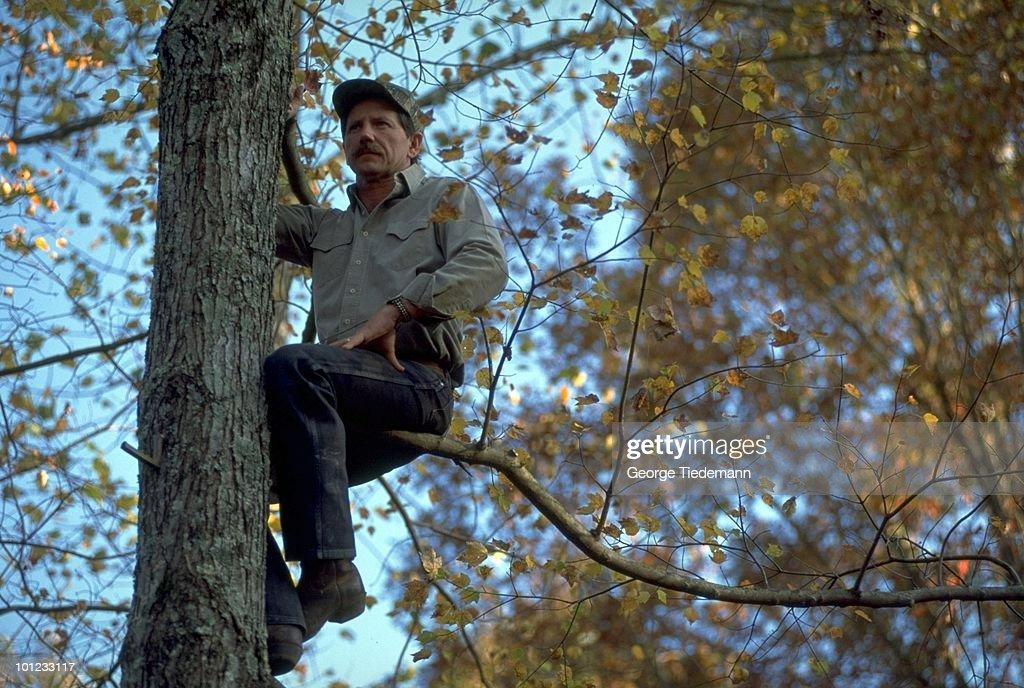 Portrait Dale Earnhardt climbing tree. Mooresville, NC