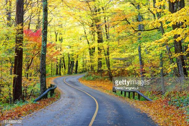auto road on mount greylock in the berkshires - massachusetts stock pictures, royalty-free photos & images