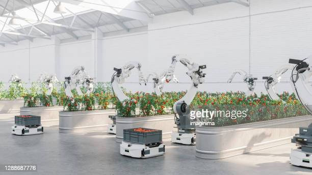 automated agriculture with robots - robot stock pictures, royalty-free photos & images