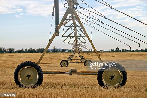 CONTENT] Automated farming wheeled irrigation system sitting in recently harvested grain field Golden grain stubble and line of trees on the horizon...