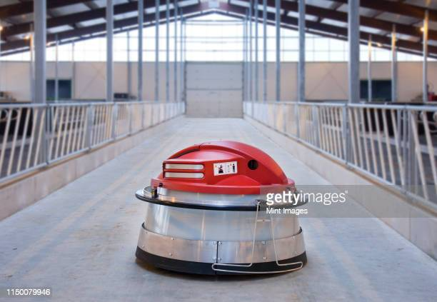 automated feed pusher - herbivorous stock pictures, royalty-free photos & images