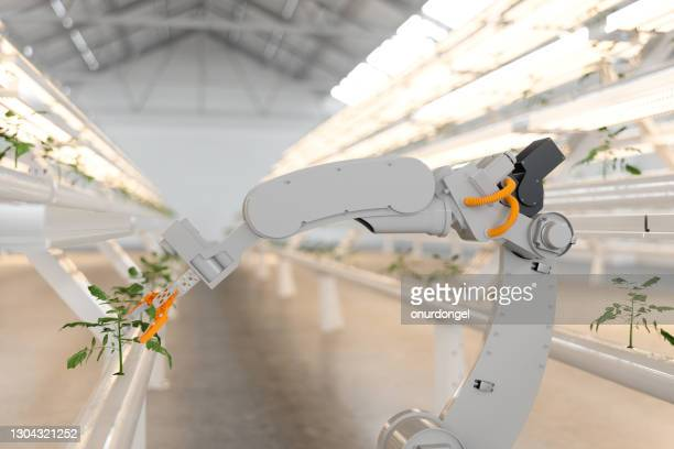 automatic agricultural technology with robotic arm in hydroponic vertical farm. - robot stock pictures, royalty-free photos & images