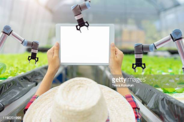 automatic robot mechanical arm and hands woman holding tablet - スマート農業 ストックフォトと画像