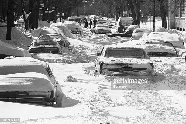 Automobiles sit immobilized along a street in Chicago following a weekend blizzard which dropped over 20 inches of snow