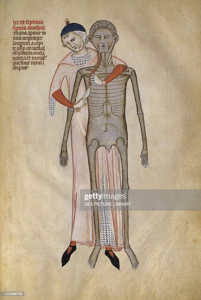 Autopsy, Liber Notabilium by Guido da Vigevano : News Photo