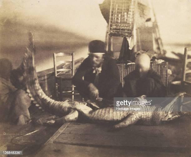 Autopsy of the First Crocodile Onboard Upper Egypt 1852 Artist Ernest Benecke