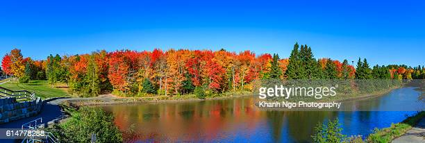 autumn 2016 - new brunswick canada stock pictures, royalty-free photos & images