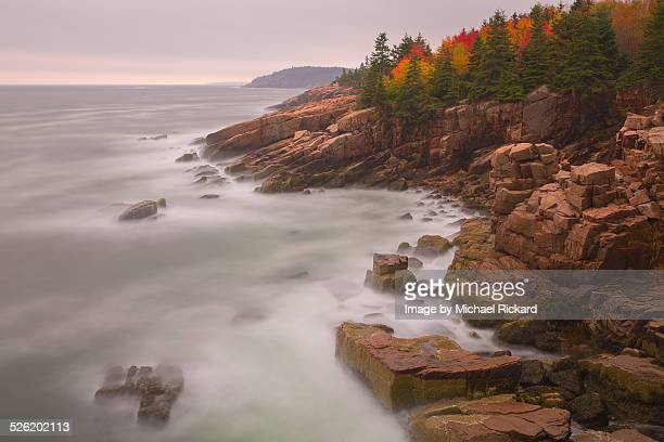 autumn acadia - bar harbor stock photos and pictures