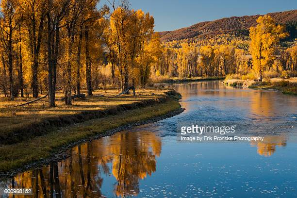 autumn along the yampa river - steamboat springs colorado - fotografias e filmes do acervo