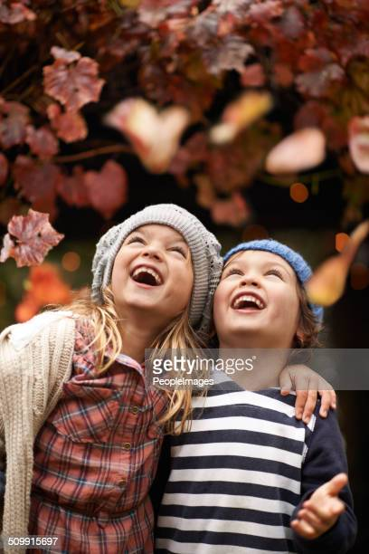 Autumn amusements
