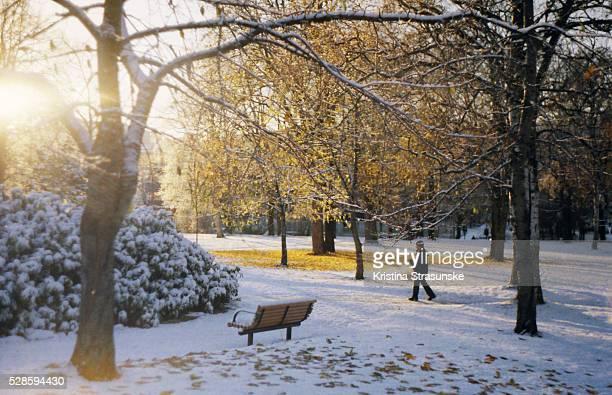 autumn and winter at the same time, urban scene in a Høyskoleparken, Trondheim, Norway