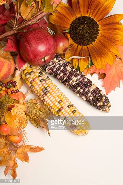 autumn arrangement - indian corn stock photos and pictures