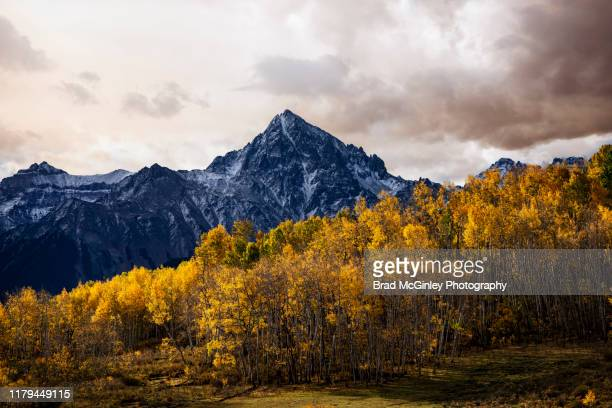 autumn aspens and mount sneffels - colorado stock pictures, royalty-free photos & images