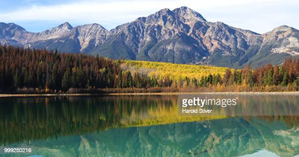 Autumn aspens reflected by the Rocky Mountains