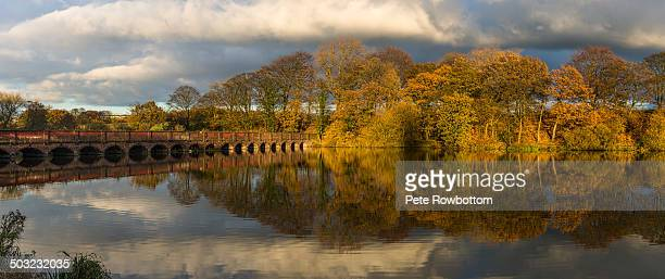 autumn at carr mill - merseyside stock pictures, royalty-free photos & images