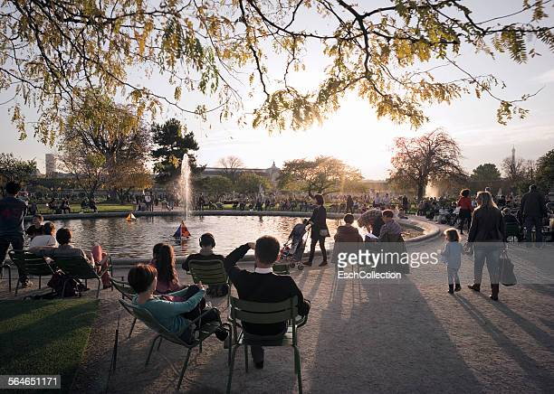 autumn at jardin des tuileries in paris, france - チュイルリー地区 ストックフォトと画像