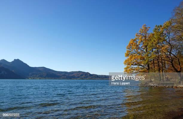 Autumn at Lake Kochel or Kochelsee Lake, Kochel am See, Upper Bavaria, Bavaria, Germany