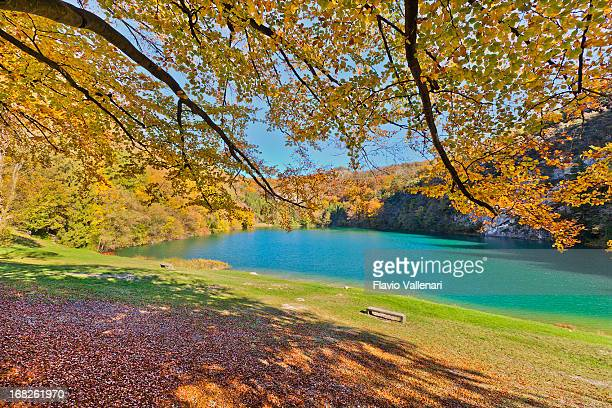 autunno al lago di lamar, italia - trento foto e immagini stock