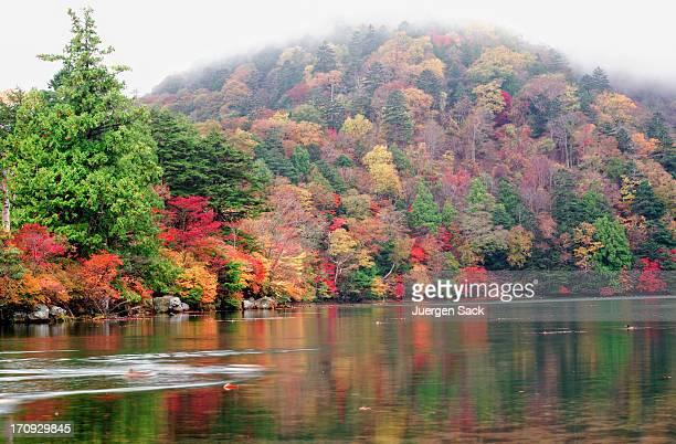 autumn at lake yunoko in nikko - nikko city stock pictures, royalty-free photos & images