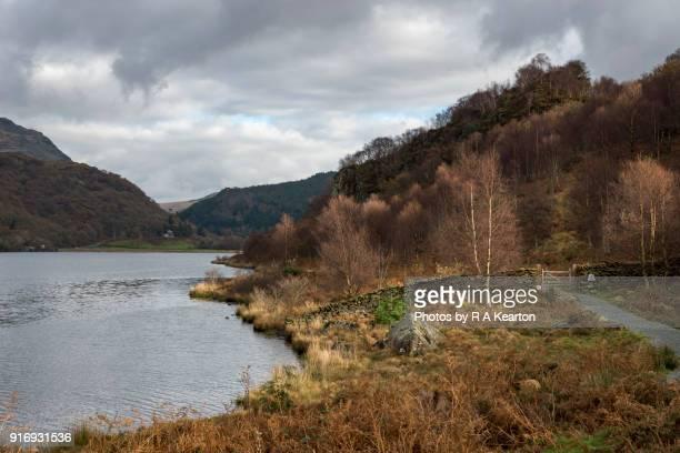 Autumn at Llyn Dinas in the Snowdonia national park, North Wales