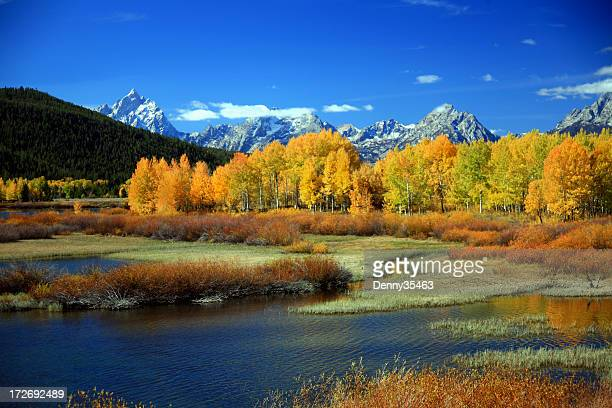 Autumn at Oxbow Bend