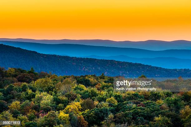 autumn at skyline drive - skyline drive virginia stock photos and pictures