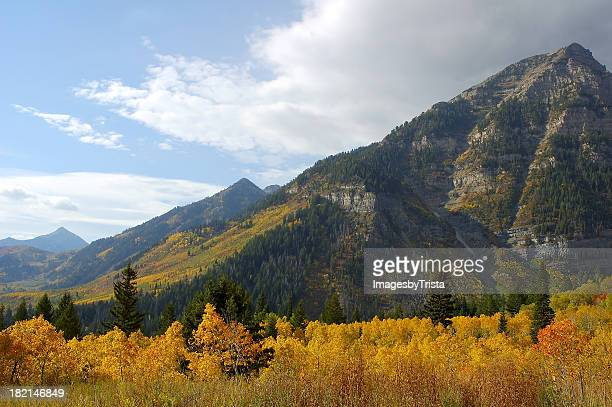 autumn at sundance - grove stock pictures, royalty-free photos & images