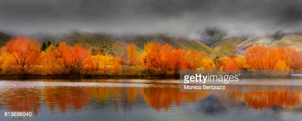 Autumn at  the Tekapo Lake