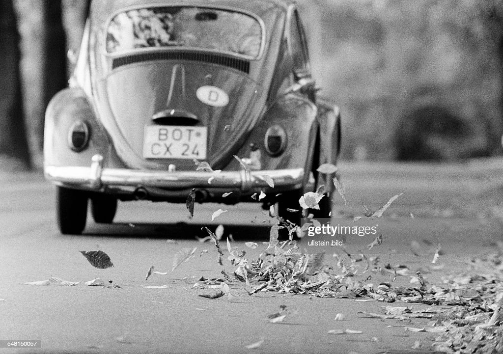 autumn, autumn leaves on the street swirled up by a passing motorcar, VW-Beetle, D-Bottrop, D-Bottrop-Kirchhellen, Grafenwald, Ruhr area, North Rhine-Westphalia - 18.10.1972 : News Photo