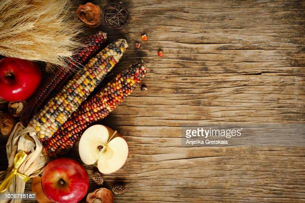 autumn background. autumn apples and corn on wooden background with copy space. - fall background stock photos and pictures