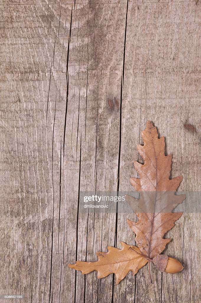 Autumn background of leaves over wooden surface : Stock Photo