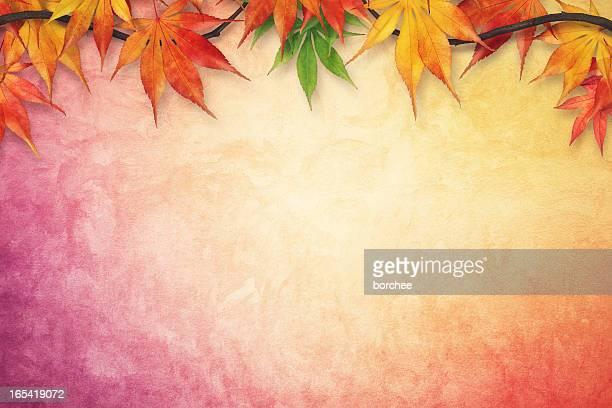 fond d'automne - bottes bigarrées photos et images de collection