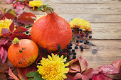 autumn background small orange pumpkins with