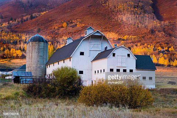 autumn barn - utah stock pictures, royalty-free photos & images