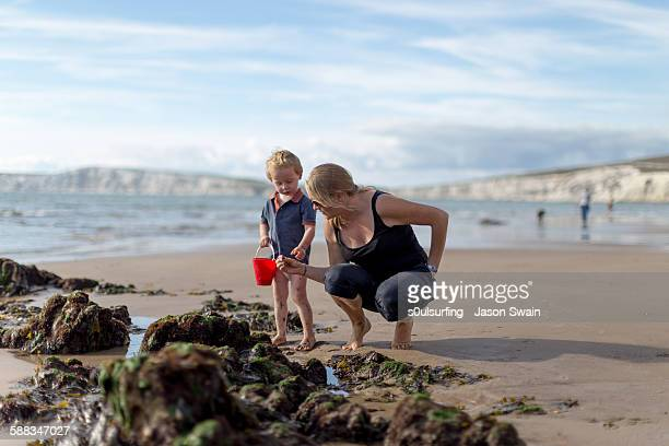 autumn beach life, compton bay, isle of wight - isle of wight stock photos and pictures